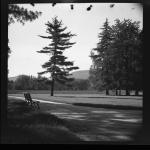 Parc Bertrand – Clichés, potences et toboggans